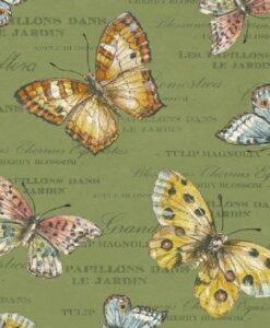Papillon - Kate McRostie